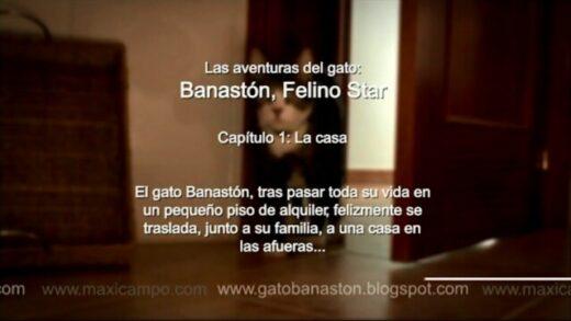 """Banastón, Felino Star - Capítulo 1 """"La Casa"""". Webserie de Maxi Campo"""