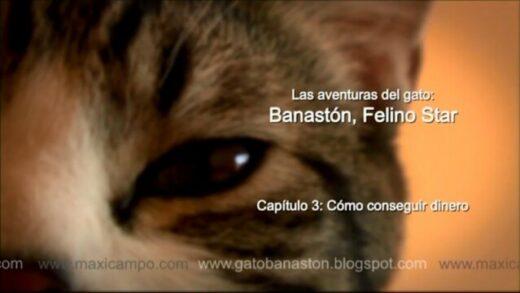 """Banastón, Felino Star - Capítulo 3 """"Cómo conseguir dinero"""". Maxi Campo"""