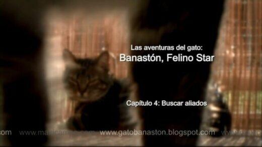 """Banastón, Felino Star - Capítulo 4 """"Buscar aliados"""". Webserie Maxi Campo"""