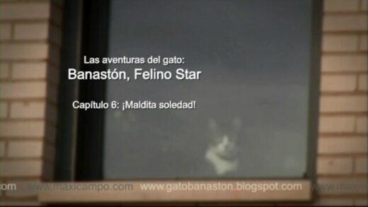 """Banastón, Felino Star - Capítulo 6 """"Maldita soledad"""" de Maxi Campo"""