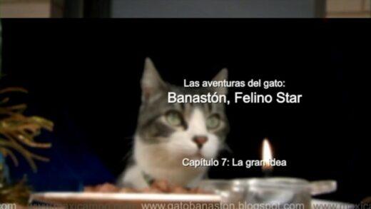"""Banastón, Felino Star - Capítulo 7 """"La gran idea"""". Webserie Maxi Campo"""