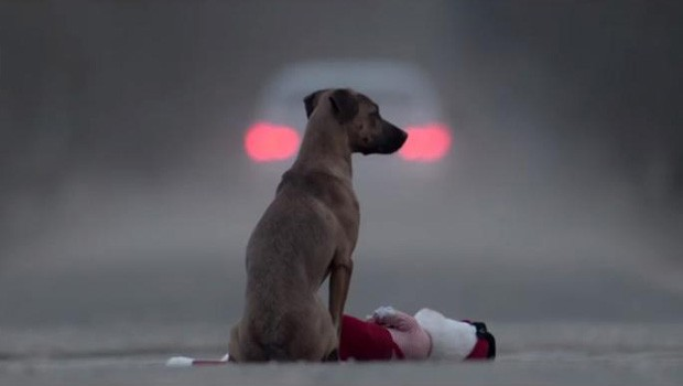 Gift. Un cortometraje sobre el abandono animal