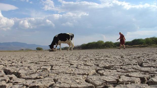 La leche y el agua cortometraje mexicano