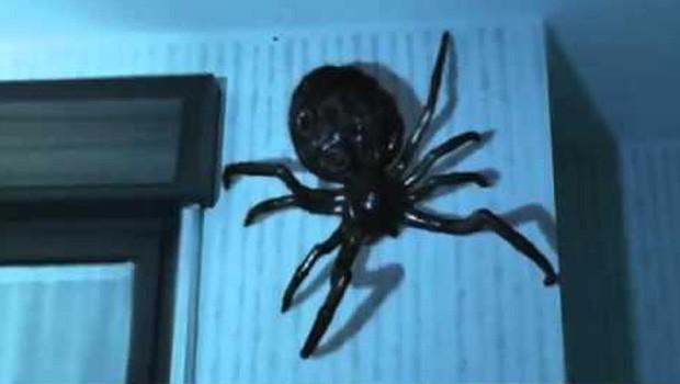 Spider danger. Cortometraje de Ciencia-Ficción de Andrea Ricca