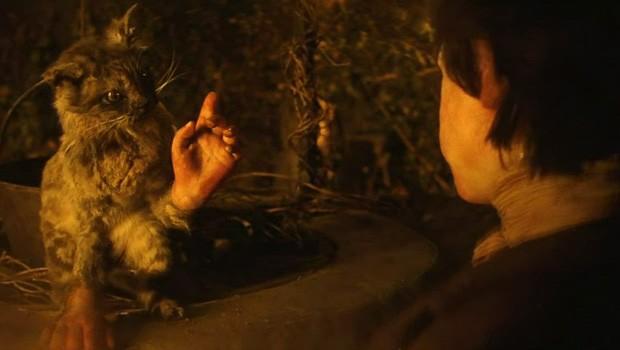 el gato con manos cortometraje de terror