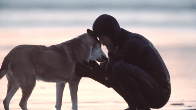 Denali. Cortometraje autobiográfico de Ben Moon y su perro