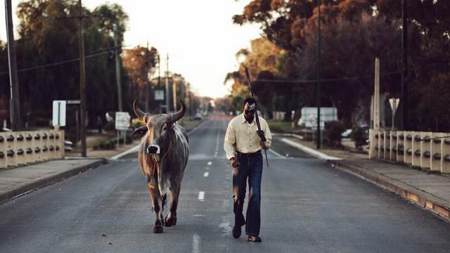 Grey Bull. Cortometraje australiano sobre la inmigración