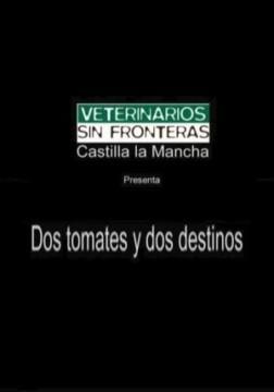 Dos tomates y dos destinos cortometraje cartel
