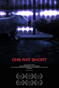 one rat short cortometraje cartel poster