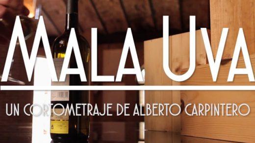 Mala uva. Cortometraje y comedia española de Alberto Carpintero