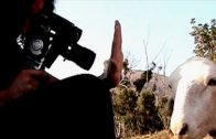 Manolito Espinberg, une vie de cinéma. Cortometraje falso documental