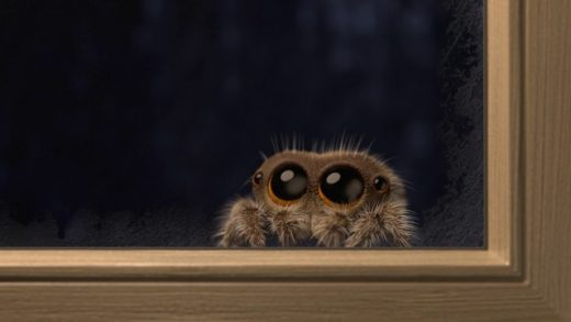 Lucas the Spider - Its Cold Outside. Cortometraje animación Joshua Slice