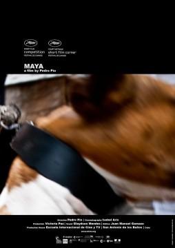 Maya cortometraje cartel poster