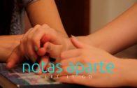 Say you won't let go (Di que nunca te irás)