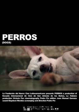 Perros cortometraje cartel poster
