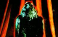 The Raven… Nevermore. Cortometraje español de Tinieblas González