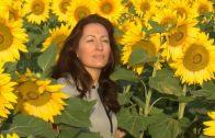 ¿Qué es para ti la felicidad?. Cortometraje finalista 2016 7 días 1 corto