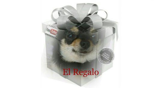 El regalo. Cortometraje sobre animales de Elvira Bernal