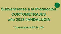 Subvenciones a la Producción de Cortometrajes en Andalucía para 2018