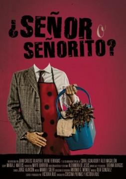Señor o señorito cortometraje cartel poster