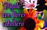 Dígalo con Flores Caballero. Cortometraje Stop-Motion de Alberto Mazarro