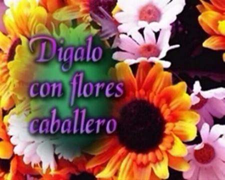 Digalo con flores caballero cortometraje cartel poster