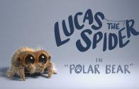 Lucas the Spider – Polar Bear. Cortometraje de animación Joshua Slice