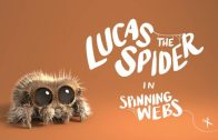 Lucas the Spider – Spinning Webs