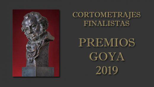 Cortometrajes finalistas en los Premios Goya 2019