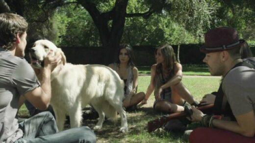 ¿Con Quién Se Queda El Perro? - Jesse & Joy - Videoclip oficial