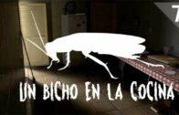 Un bicho en la cocina – Las Cucarachas