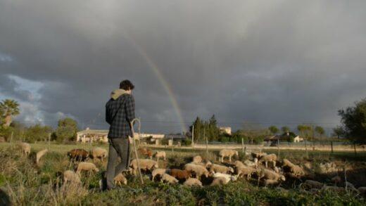 Sa terra. Cortometraje sobre la vida rural de Borja Zausen