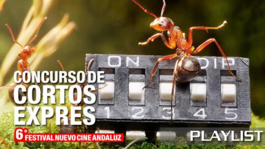 VI Concurso de cortos exprés Nuevo Cine Andaluz