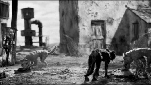 Canis. Cortometraje de animación de Marc Riba y Anna Solanas