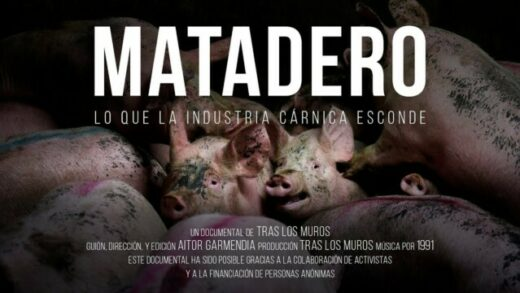 Matadero. Lo que la industria cárnica esconde. Cortometraje documental