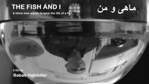 El pez y yo. Cortometraje y drama iraní de Babak Habiifar