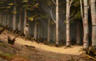 100,000 Acres of Pine