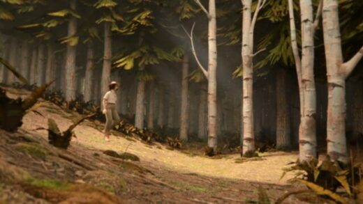 100,000 Acres of Pine. Cortometraje de animación de Jennifer Alice Wright